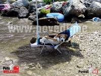 Pas na ležaljci, Prapratno, poluotok Pelješac